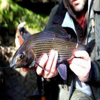 Fishing at Wodencrft 4