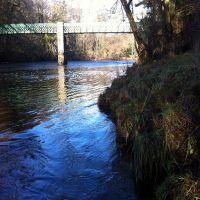 Fishing at Wodencroft 13