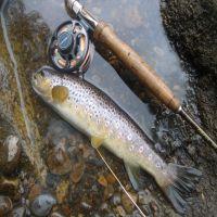 Fishing at Wodencroft 1