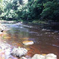 Fishing at Wodencroft 3