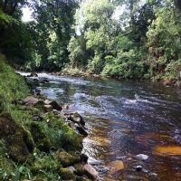 Fishing at Wodencroft 6