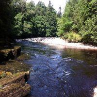 Fishing at Wodencroft 7