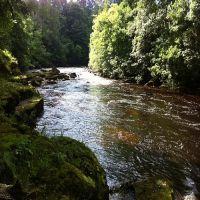 Fishing at Wodencroft 4