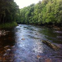 Fishing at Wodencroft 5