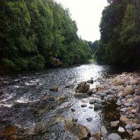 Fishing at Wodencroft 9